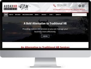 Audax HR Services website pc monitor