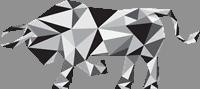 audax bull logo